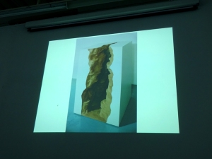 160127 PG Lecture Tania Kovats 04 canyon landscape for web