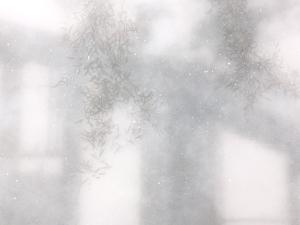 161212-alex-hartley-at-v-miro-03-for-web